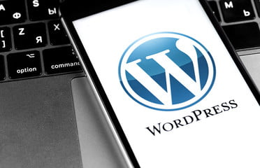 new wordpress version update