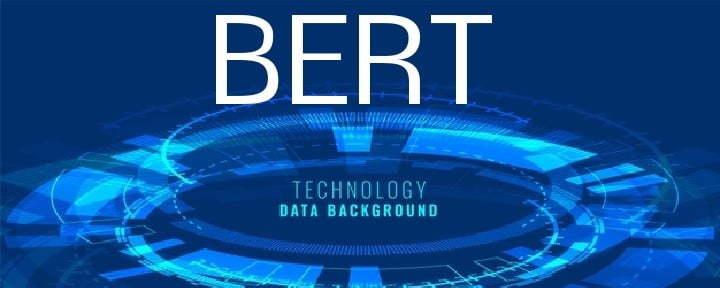 Google BERT Technology