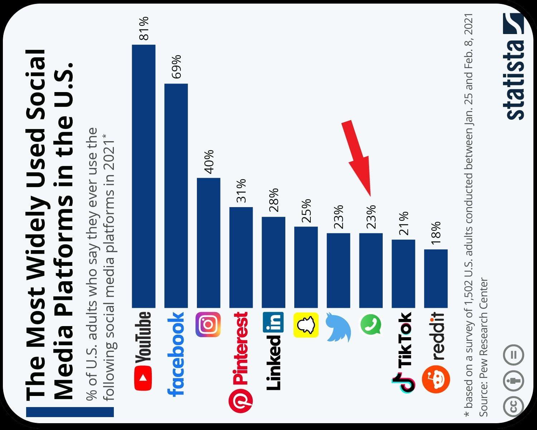 Top 10 social media users in the U.S